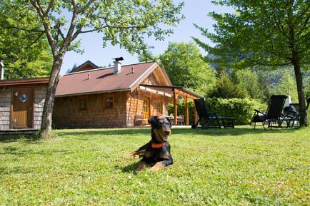 Gemütliches Ferienhaus : Region Oberösterreich für 8 Personen