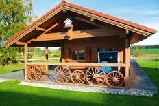 Vakantiehuis 916377 voor 4 personen in Kanzach