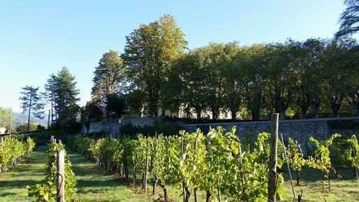 Gemütliches Ferienhaus : Region Serravalle Pistoiese für 19 Personen