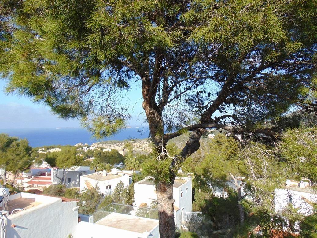Ferienwohnung für 4 Personen ca 75 m² in Cala Vadella Ibiza Westküste von Ibiza