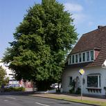 Holiday apartment 970539 for 1 adult + 4 children in Loxstedt