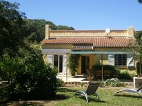 Holiday home 976479 for 8 persons in Ramatuelle