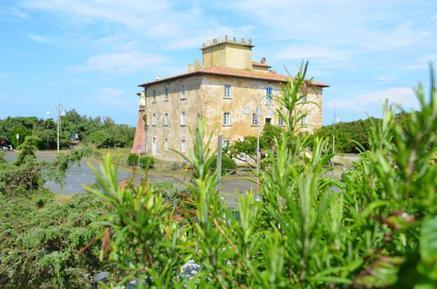 Room : Region Marina di Bibbona für 2 Personen