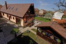 Holiday home 982065 for 12 persons in Brasov
